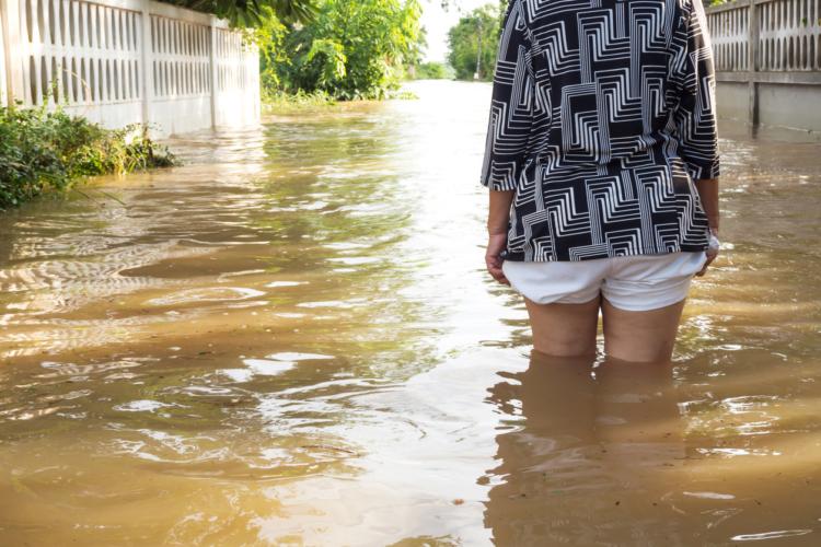 地域によって注目される災害が異なる