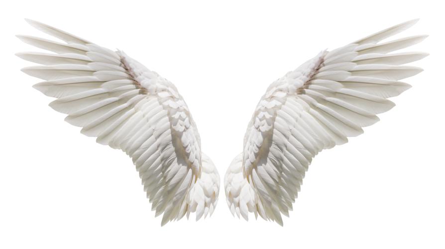 Aerosmith「Last Child」(エアロスミス「ラスト・チャイルド」
