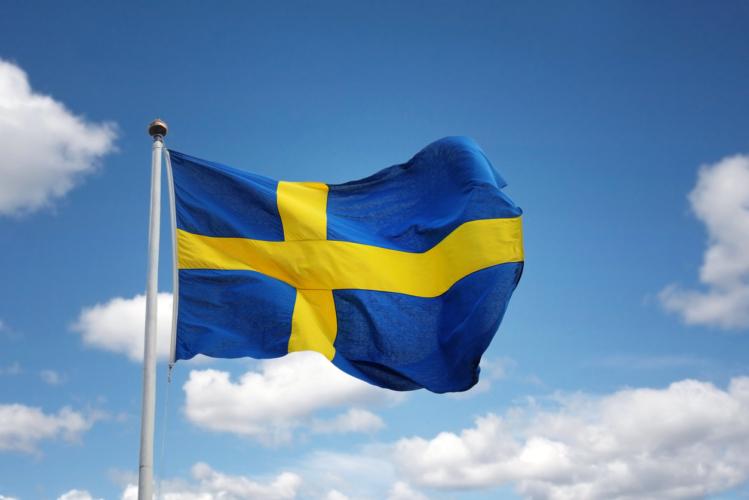 グローバル企業を生み出すスウェーデン!