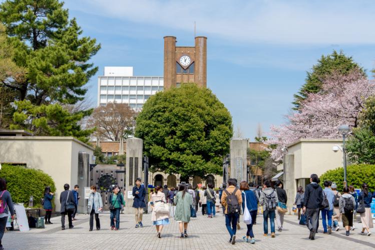 日本の企業は総合職