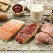タンパク質枯渇は死活問題