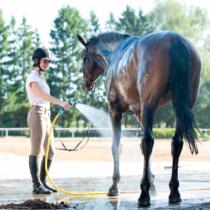 斤量が軽いとそんなに馬は走るの?