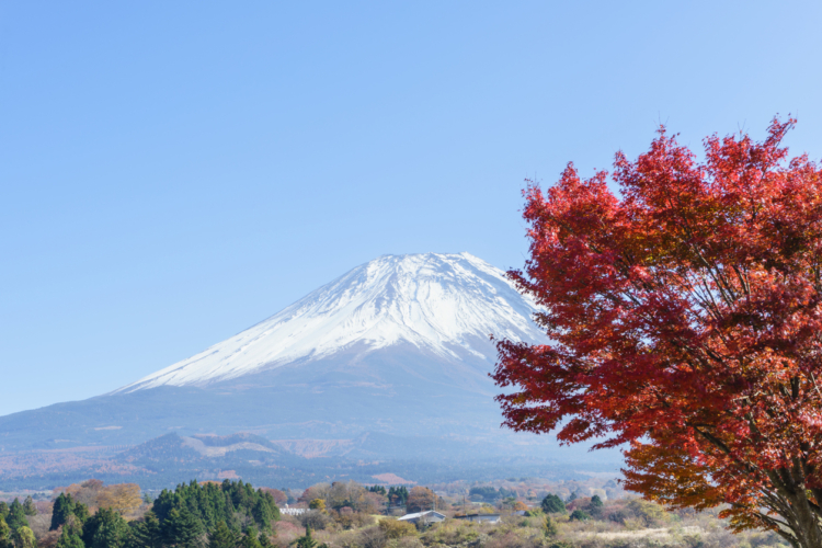 スピリチュアルにも支えられる富士山