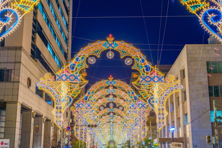光に包まれる12月のシンボル的存在