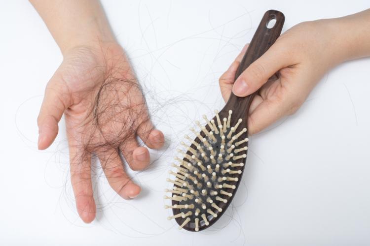 どうして秋に抜け毛が増えるの?…そのカギは夏の過ごし方にあり!